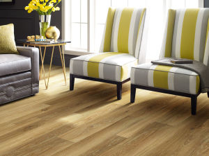 Best Laminate flooring Gallery